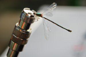 Antenne metingen 6
